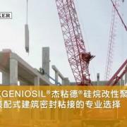 瓦克化学(中国)有限公司